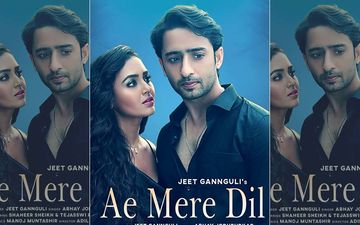 Ae Mere Dil First Look OUT: Shaheer Sheikh- Tejasswi Prakash's Intense Chemistry Leaves Fans Excited: '#TejHeer On Fire'