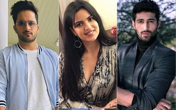 After Adah Sharma and Priyank Sharma, Aashim Gulati, Veer Rajwant Singh And Natasa Stankovic Have Joined The Holiday
