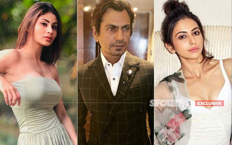 After Mouni Roy's Exit, Rakul Preet Singh Turns Down Bole Chudiyan- No Heroine For Nawaz?