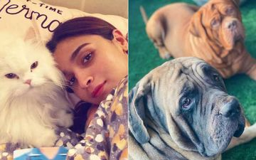 Coronavirus Lockdown: Alia Bhatt Is Staying With Ranbir Kapoor, His Two Dogs And Her Cat; All Together During Quarantine