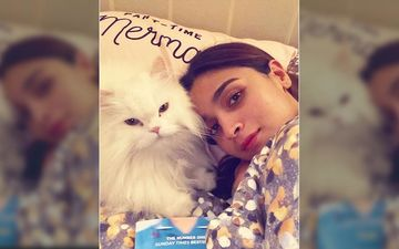 Alia Bhatt Shares A Bed Selfie With The Feline Love Of Her Life, Gets Serious Love From Her Instafam