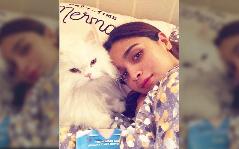 Gangubai Kathiawadi Actress Alia Bhatt Hurts Her Back; Little Kitty Eddie Gives A Health Update – See Pic