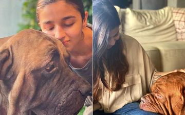 Alia Bhatt And Sister Shaheen Bhatt Picture With Ranbir Kapoor's Doggos Will Take Away Your Monday Blues