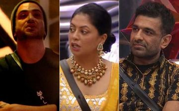 Bigg Boss 14: Aly Goni DISQUALIFIES Kavita Kaushik From Captaincy Task After She PUSHES Eijaz Khan