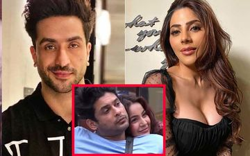 Bigg Boss 14: Aly Goni Lashes Out At Nikki Tamboli For Hitting On Sidharth Shukla; 'Whole World Knows How Much Shehnaaz Loves Sid'