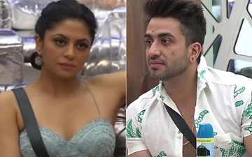Bigg Boss 14: Kavita Kaushik Faces The Wrath Of Netizens After She Calls Aly Goni 'Small Town Gully Ka Gunda', Gets Slammed For Stereotyping People