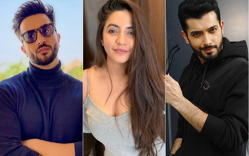 Facebook, Instagram, Twitter Ban In India: Aly Goni, Sharad Malhotra And Meera Deosthale Not In Favour