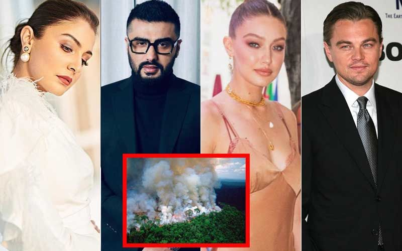 Amazon Rainforest Fires: Anushka Sharma, Arjun Kapoor, Gigi Hadid, Leonardo DiCaprio Express Concern, Lobby To #SaveAmazon