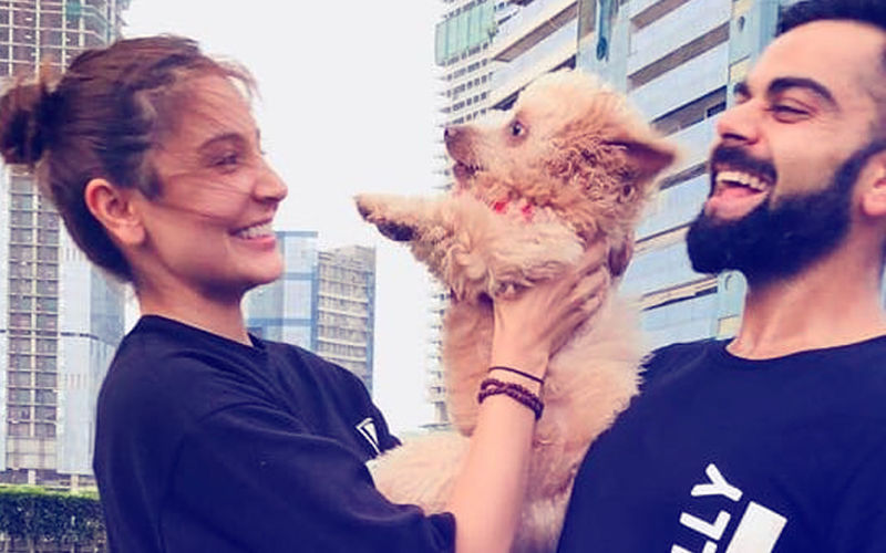 Viral Pic: Anushka Sharma & Virat Kohli's Cute Moment With A Pup!