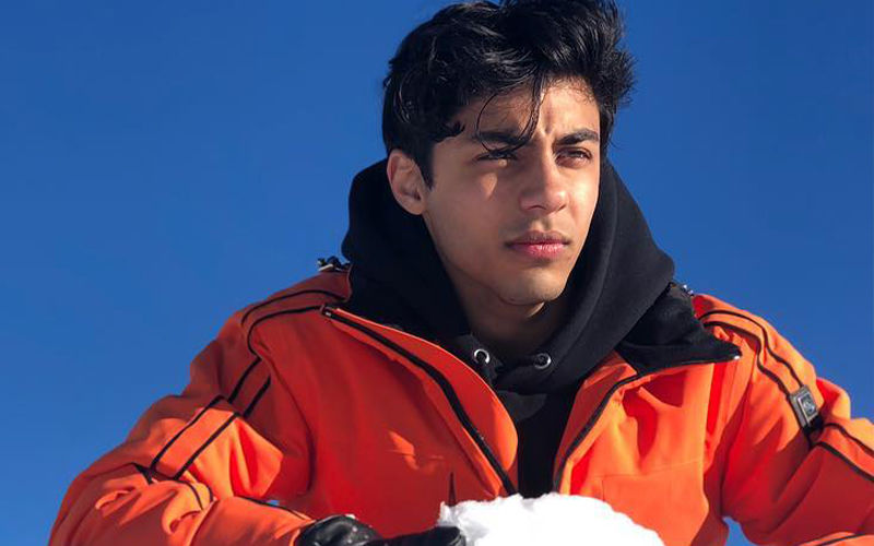 Shah Rukh Khan's Son, Aryan Khan's Swanky French Holiday Pictures Sets The Temperature Soaring
