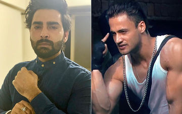Bigg Boss 13: Manveer Gurjar Sides With Sidharth In His Fight With Asim, Says Latter 'Deserves A Tight Slap'