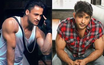 Bigg Boss 13 POLL: Asim Riaz Beats Sidharth Shukla To Become The HOTTEST And YUMMIEST HM - Ooh Mama