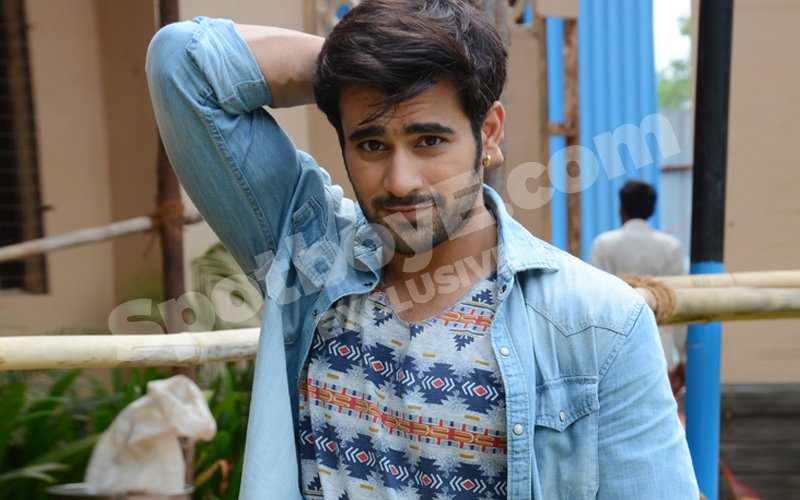Pearl V Puri thrown out of Meri Saasu Maa due to his starry tantrums?