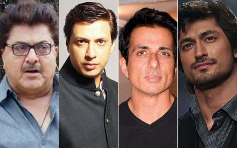 Article 370 Revoked In Jammu And Kashmir: Bollywood Celebrities React To Pakistan Banning Indian Films