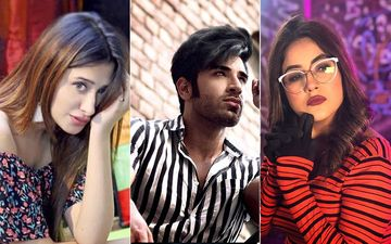 Bigg Boss 13: Mahira Sharma And Shehnaaz Gill Fight Over Paras Chhabra; A New Love Triangle In BB?