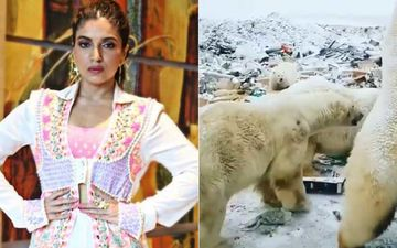 Climate Warrior Bhumi Pendekar Shares A Heartbreaking Video Of Polar Bears Surrounded With Plastic