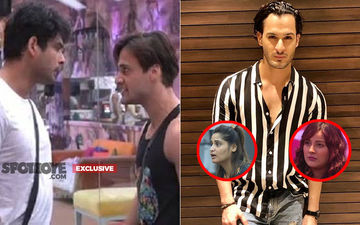 Bigg Boss 13, Jai-Veeru War: Asim Riaz's Brother, Umar BLAMES Arti Singh And Shehnaaz Gill For Breaking Asim's Dosti With Sidharth Shukla- EXCLUSIVE