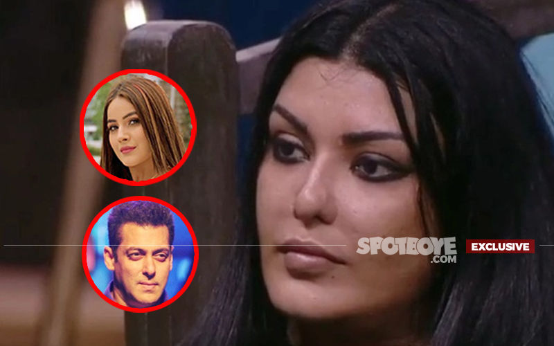 Bigg Boss 13: Koena Mitra Has No Regrets Of Being On The Show, Despite Salman Khan Defending Shehnaaz Gill- EXCLUSIVE