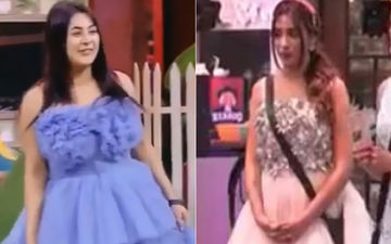Bigg Boss 13 Ladies Shehnaaz Gill And Mahira Sharma Are Totally Mesmerising In Cinderella Gowns