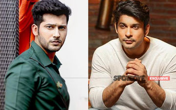 Bigg Boss 13: Namish Taneja Clarifies, 'I'm Not Anti Sidharth Shukla So Why Will I Call Him 'Kutta'?'- EXCLUSIVE