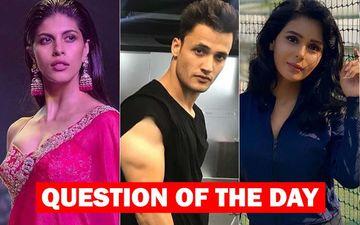 Bigg Boss 13: Who Do You Think Is Saying The Truth- Asim Riaz's Girlfriend Shruti Tuli Or Sonal Vengurlekar?