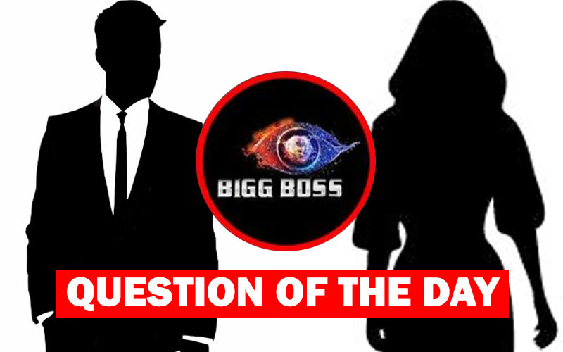 Bigg Boss 13: Who Do You Think Should Be Evicted This Weekend?