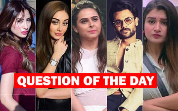 Bigg Boss 13: Who Should Be Evicted Next?