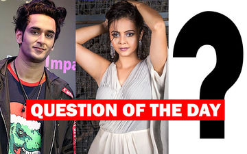 Bigg Boss 13: With Vikas Gupta And Devoleena Bhattacharjee Out This Week, Would You Like Another Eviction Tomorrow?