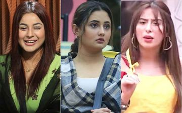 Bigg Boss 13 Written Updates Day 49: Shehnaaz Gill Saves Paras Chhabra From Nominations, Rashami Desai Questions Mahira Sharma's Loyalty