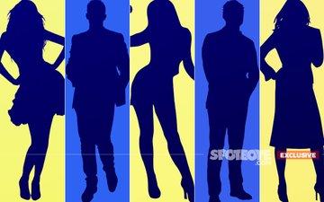 Here's The CONFIRMED List Of 5 Celebrity Contestants On Salman Khan's Bigg Boss 11