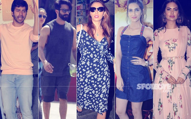 STUNNER OR BUMMER: Varun Dhawan, Shahid Kapoor, Iulia Vantur, Kriti Sanon Or Esha Gupta?