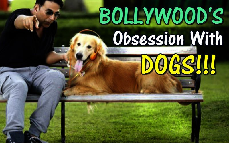 10 Dialogues That Prove Bollywood's Obsessed With Dogs!