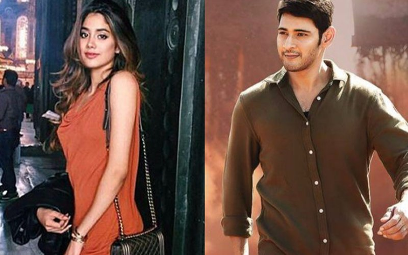 POLL OF THE DAY: Did Jhanvi Kapoor take the right decision in saying 'No' to a Mahesh Babu film?