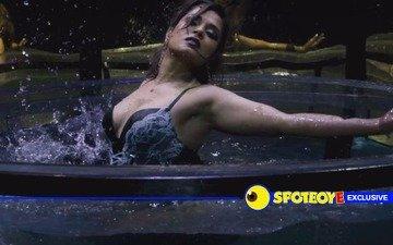 Richa Chadha-starrer Cabaret postponed by 2 weeks