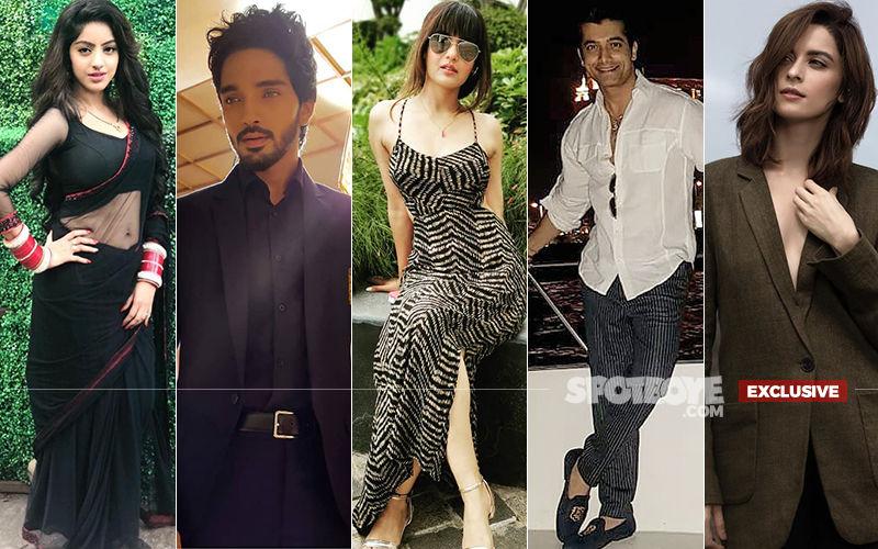Happy Raksha Bandhan 2019: Meet Deepika Singh, Harsh Rajput, Jasmin Bhasin, Ssharad Malhotra And Ekta Kaul's Non-Sibling Rakshak