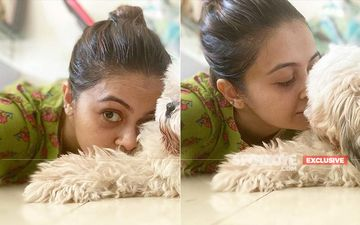 Devoleena Bhattacharjee's Dog Angel Is Unwell; Actress Says, 'The Treatment Is On and She Is My Priority'