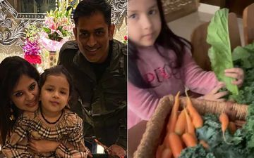 MS Dhoni's Daughter Ziva Dhoni Gives A Glimpse Of Their Homegrown Veggies; Li'l Princess Picks What Needs To Be Cooked