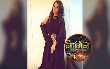 Naagin 5: Bigg Boss 12 Winner Dipika Kakar Approached To Play The Lead In Ekta Kapoor's Supernatural Show After Mahek Chahal?