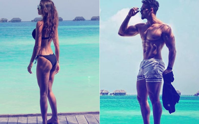 Tiger & Disha's Sri Lankan Holiday: Lovebirds Flaunt Their Perfect Bods At The Beach