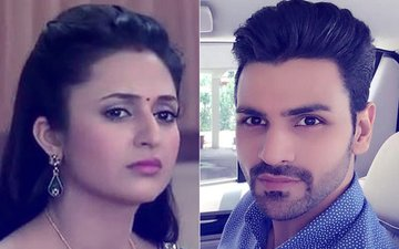 Did Divyanka Tripathi Hit Her Husband Vivek Dahiya?