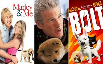 Marley And Me, Hachi, Bolt – Top 5 Movies For All The Dog Lovers You Can JUST BINGE On To Lighten The Mood
