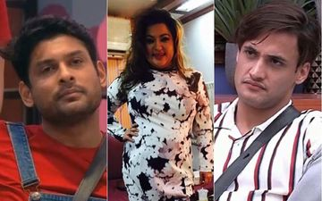 Bigg Boss 13: Dolly Bindra Turns Munna Bhai, Says 'Get Well Soon Asim Riaz' Post His Fight With Sidharth Shukla