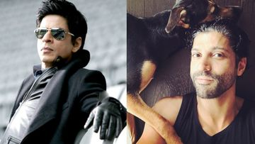 Is Don 3 With Shah Rukh Khan Ever Going To Happen? Here's What Farhan Akhtar Has To Say