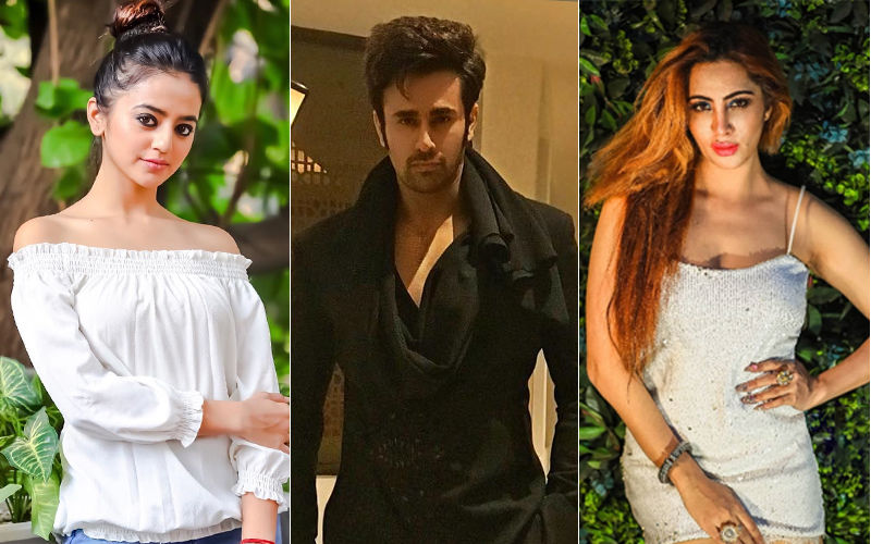Eid Mubarak 2019: Here's What Helly Shah, Pearl V Puri, Arshi Khan Have asked From The Almighty!