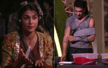 Bigg Boss 14 Nomination Task: BB Puts Pavitra Punia In Tough Spot; Eijaz Khan To Ruin His Fave Dog Frame To Make PP Safe