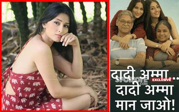 STAR Plus Loses Another Show: Daadi Amma, Daadi Amma Maan Jaao Goes Off Air- EXCLUSIVE