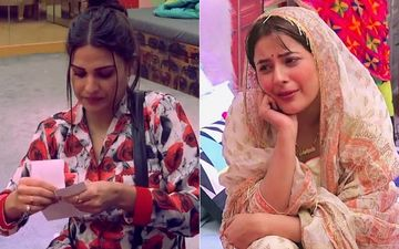 Bigg Boss 13: Himanshi Khurana Reveals Why She Almost Filed A Police Complaint Against Shehnaaz Gill