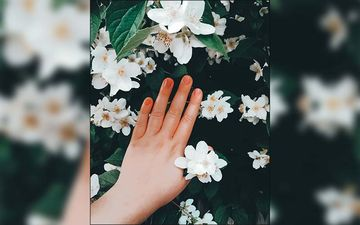 COVID-19: Try These Simple Home Remedies For Dry Hands Caused By Frequent Hand Washing