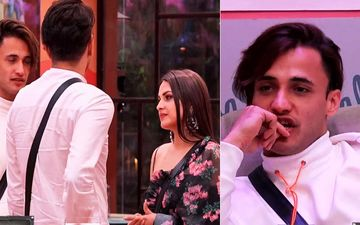 Bigg Boss 13 Jan 29 2020 SPOILER ALERT: Vikas Gupta Confronts Asim- Himanshi About Riaz's Connection Outside, Asim Says 'Bohot Kuch Chal Raha Hai Baahar'