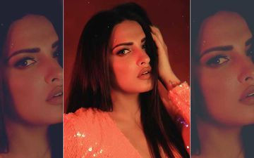 Bigg Boss 13: Ex-Contestant Himanshi Khurana's Sensuous Photos And TikTok Videos That Made Her A Sensation